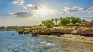 Египет, фото 1